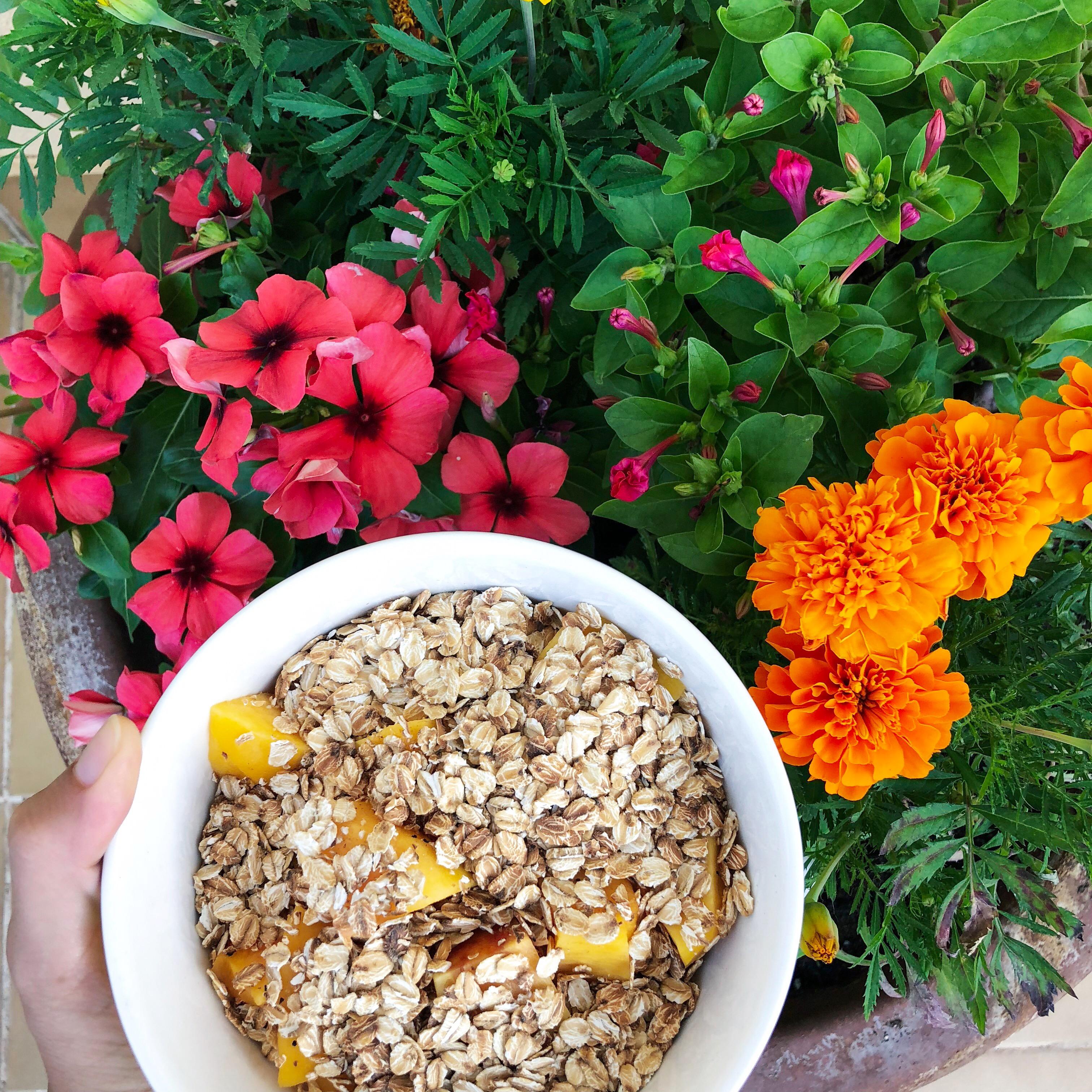 Bowl de melocotón y avena